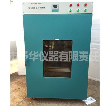 DHG-9620电热鼓风干燥箱