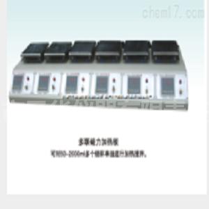 TWJR-DL调温多联加热板